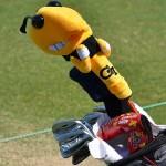 GeorgiaTech_golf